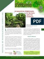malezas y herbicidas.pdf