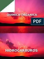 SUSTENTACIÓN QUIMICA ÓRGANICA