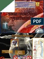Neurotoxic Os