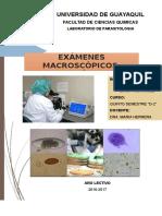 Exámenes Macroscópicos, Microscópicos y Quimicos