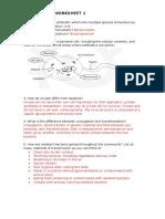 Antibiotic Resistance ANSWERS to WORKSHEET 1