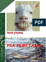 PRAMAPPING 2011-291015