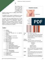 Glándula Tiroides - Wikipedia, La Enciclopedia Libre