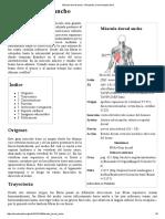Músculo Dorsal Ancho - Wikipedia, La Enciclopedia Libre