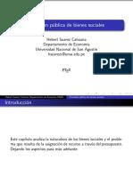 Cap 4 Provision Publica de Bienes Sociales