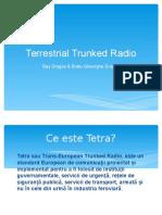 Terrestrial Trunked Radio