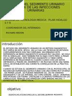 Utilidad del sedimento urinario en el dx de exposicion pilar urgente para el informe.pptx