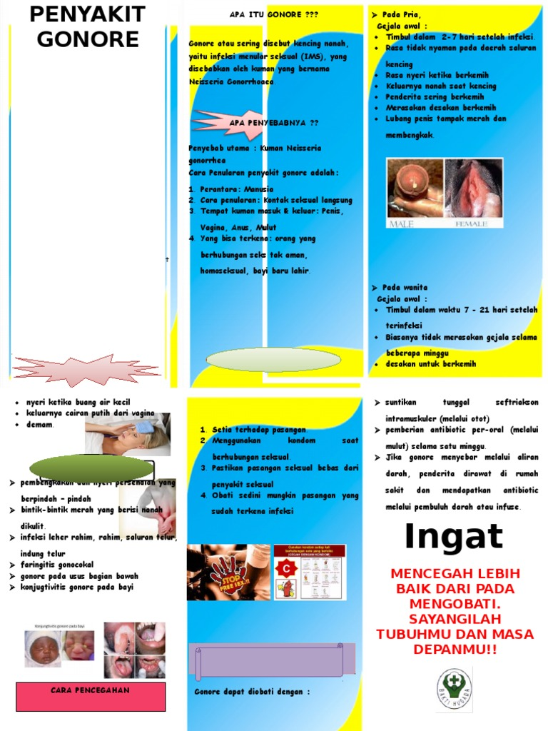 322156070 Leaflet Gonore