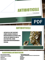 Toma Roxana- Metaboliti Secundari Antibiotice(