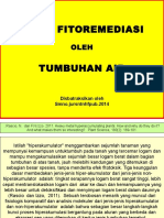 STELA-TEORI-FITOREMEDIASI1(1).pptx