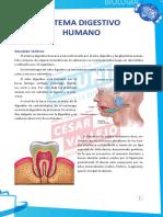 1. Res_Dirigidas_B_06 (3).pdf