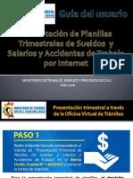 OVT - Guia Del Usuario - Presentacion Trimestral