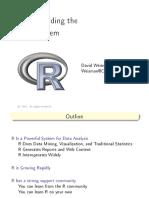 R-Ecosystem, David Weisman, 2012-09