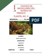 Biografia Jaguar