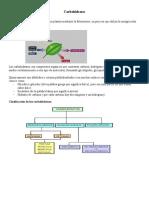 Unidad 8- Apuntes de Carbohidratos