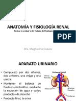 ANATOMÍA Y FISIOLOGÍA RENAL.pdf