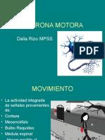 neurona-motora