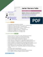 Curriculum Vitae Javier Herrero Valle