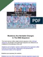 DNA+Mutation+And+Repair