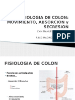 fisiologia de colon
