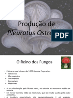 ponencia_p.cheira.pdf