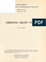 Girdling Grape Vines