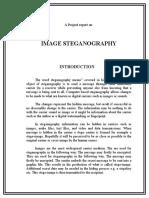 Project Report- Steganography | C Sharp (Programming Language