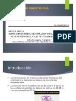 artículo-ginecología.pptx