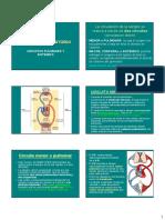 Circulacion Doble y Ciclo Cardiaco