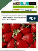 Agrariape Lima Primer Productor de Fresa a Nivel Nacional