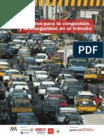 Antidotosparalacongestioneinseguridad.pdf