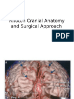 Rhoton Cranial Anatomy and Surgical Approach 2