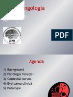 242653692-Neurolaringologia-1-pdf.pdf