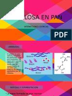 Celulosa Pan
