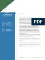 CV Gabriel Caviedes