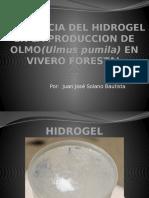 Influencia Del Hidrogel Para Alumnos Del Ing Cossio