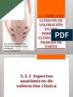aspectos anatomicos de valoracion del trabajo de parto