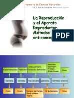 Aparato_reproductor_Metodos_anticonceptivos (2).pps