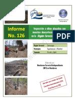 Borrador Informe 126 Sigua Meambar (Vrs 25 Feb 2016)