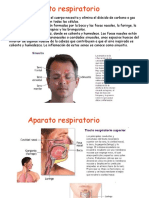 respiratorio-100106052418-phpapp01.ppt