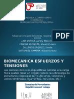 Biomecanica Antropometria