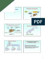 13-BIOQUIMICA Hiperlipoproteínemias CLASE 13