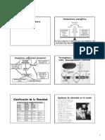 15-BIOQUIMICA Aspectos Moleculares de La Obesidad. Diabetes Mellitus Obesidad CLASE 15
