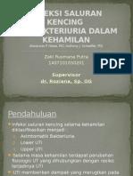 Urinary Tract Infection and Bacteriuria in Pregnancy- Zakirusmana