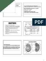 4-Bioquimica Exploración de La Función Renal Clase 4