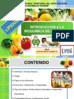 LÍPÏDOS. Bioquímica de Alimentos