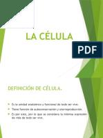 Celula Clase