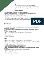 Leitura Das Caracteristicas dos Arcanos Maiores