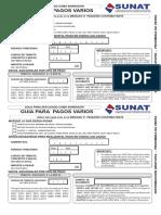 GUIA PAGOS VARIOS.pdf
