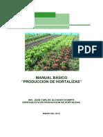 Manual Hortalizas Pesa Chiapas 2010